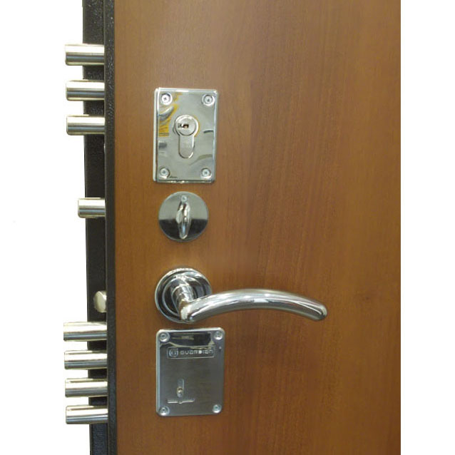 Усиленная железная дверь с двумя замками