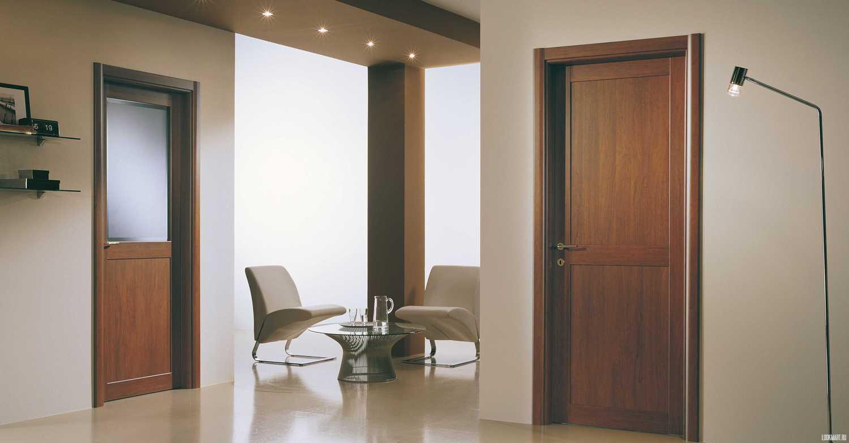 Офисные двери: глухая и с остеклением